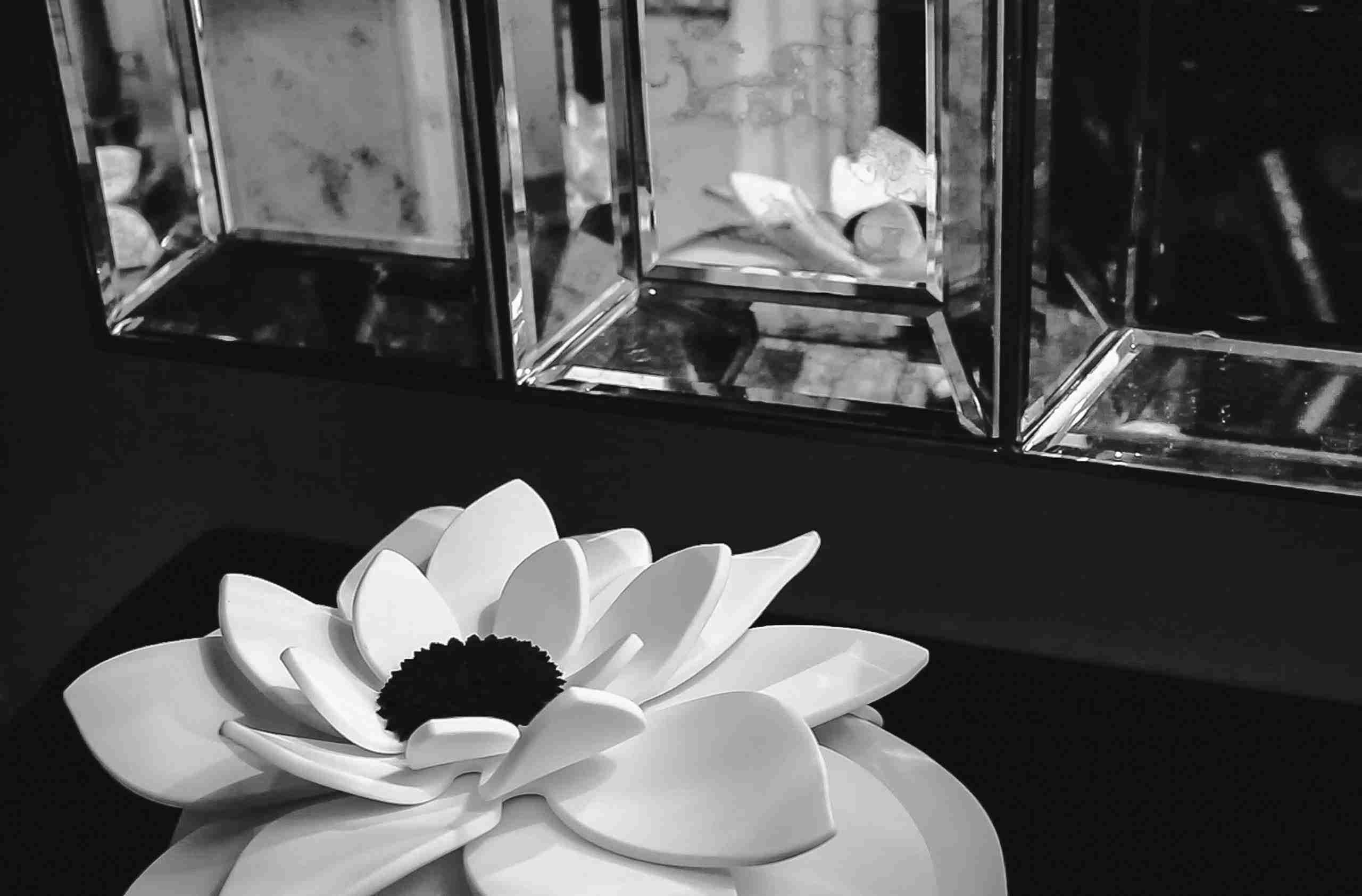 my-flower-mybia